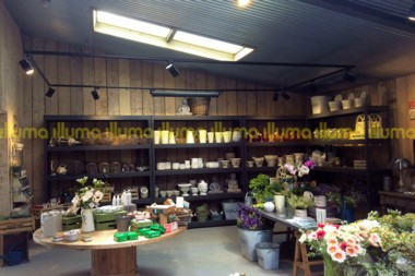 Symondsbury Home and Garden Centre