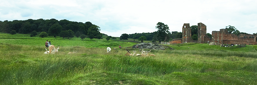 landscape view of bradgate countryside park.jpg